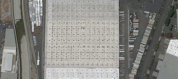 Image Classification AI